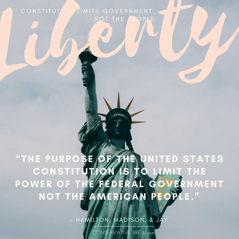 the term limits in the united states government Many would argue that the two-term presidential limit was enacted in  in his  wisdom, washington realized that the very nature of america.